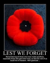 remembrance day poppy for Nov 11 2015
